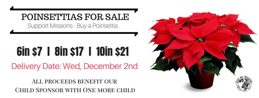 Poinsettias For Sale - 2020 (website pag