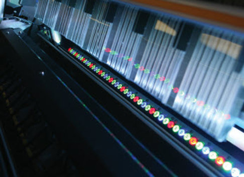 Leading industry standard through optical sorting.