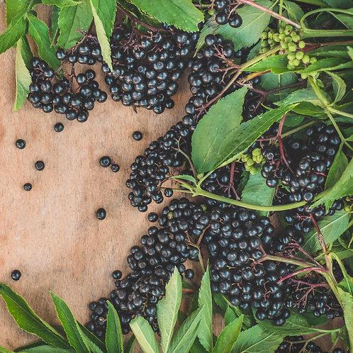 Elderberry Flavoring