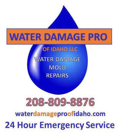 Water Damage Pro.jfif
