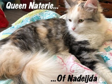Queen Naterie of Nadeijda.JPG