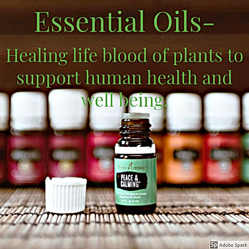 Essential Oils Healing life blood of plants to support human health and well being