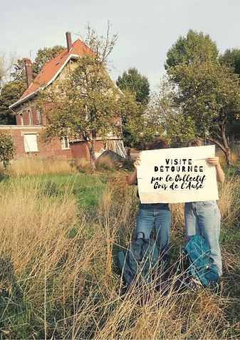 Visite détournée-affiche (1).png