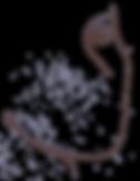 IMG_7537_brown_transparent_lg_edited.png