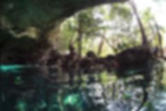 green-divers-yucatan.jpg