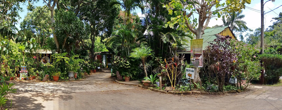 Eco Posada Tortuga Verde, in the middle of a Beautiful Garden.