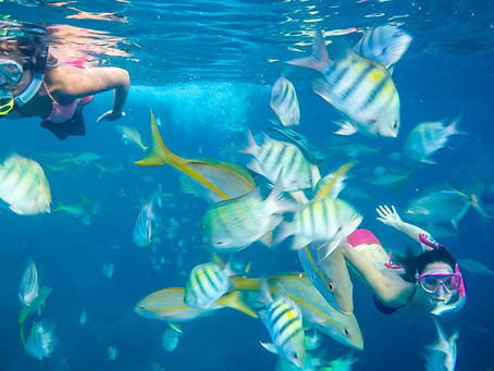 The Best Snorkel Spots in Belize