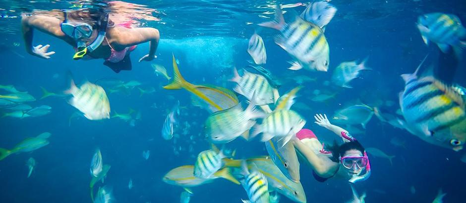 The Best Snorkel Spots in Belize