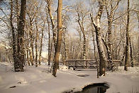 peggy-ray-beaver-creek-winter-2.jpg