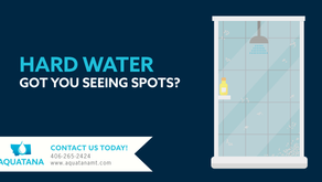 Seeing Spots in the Shower?