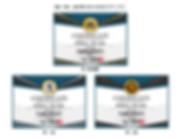 デザイナーズ:ディプロマ認定証の作り方【SPY-004】シャインメダリスト3段階イメージ