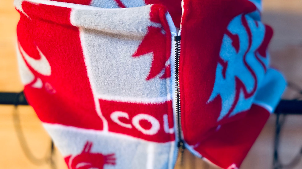 Lux + Washington State scarf