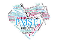 PMS Wordcloud.jpg