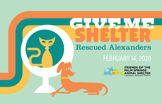 2020-Spring-GiveMeShelter-Book-1.png