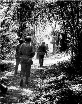 Marauders in the Jungle