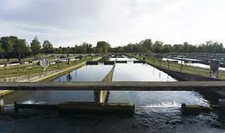 Fish farm water image.jpg
