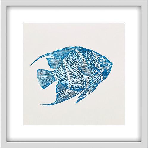 'Angelfish' Original Linocut Print