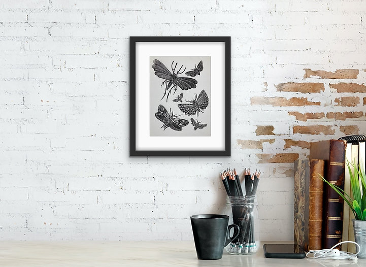 Moths-Insects-Linocut-Print_edited.jpg
