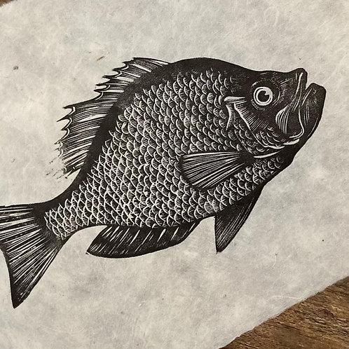 'Bass' Original Unframed Linocut Print