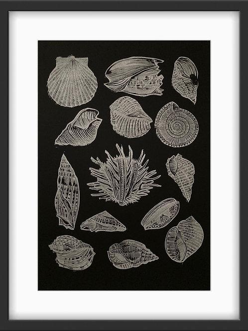 Seashells - Original Linocut Print