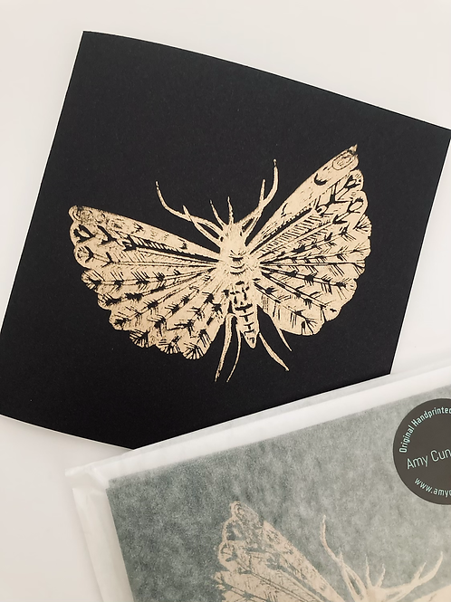 'Moth' Blank Greeting Card