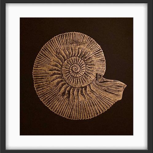 Ammonite - Original Linocut Print (Copper on Black)