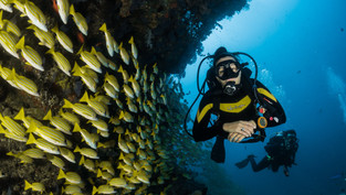 水肺潛水證照系統介紹比較就看這篇!