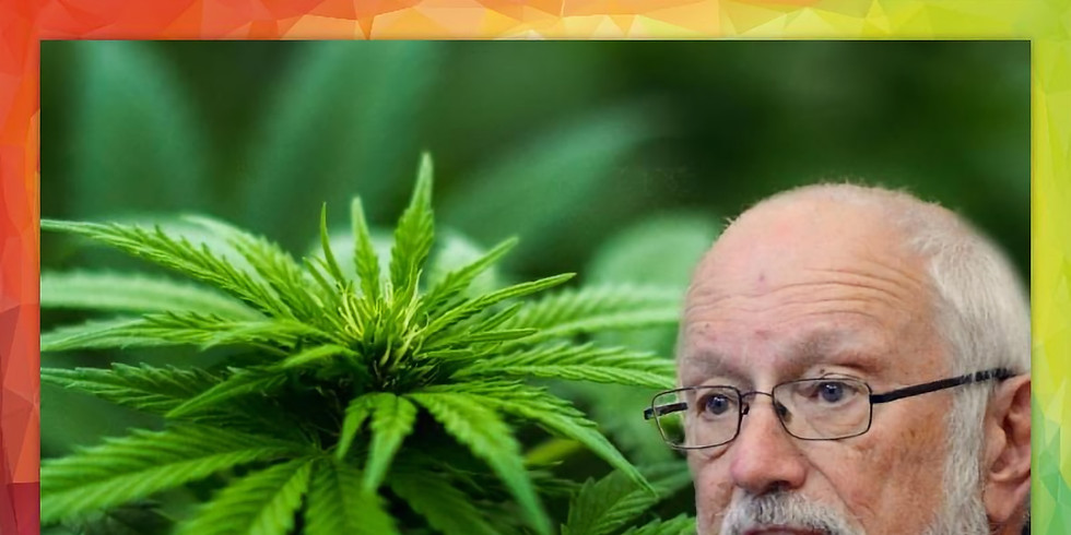 Legalizing Cannabis: A Conversation with State Sen Gerald Ortiz y Pino