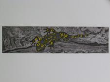 Fire Salamander III