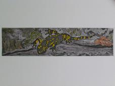 Fire Salamander II