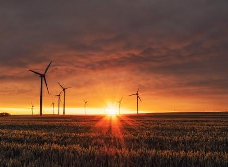 Canicule : les éoliennes à la peine
