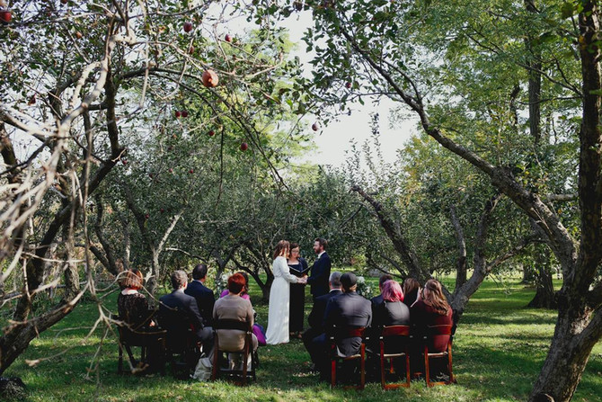 Wedding Officiant's Thoughts on Microweddings