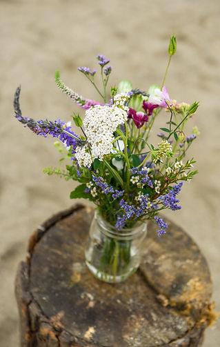 Wildflowers Vermont.jpg