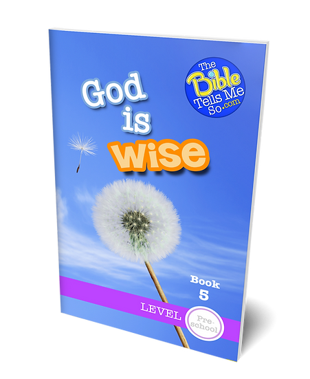 God is Wise