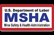 MHSA Logo.png