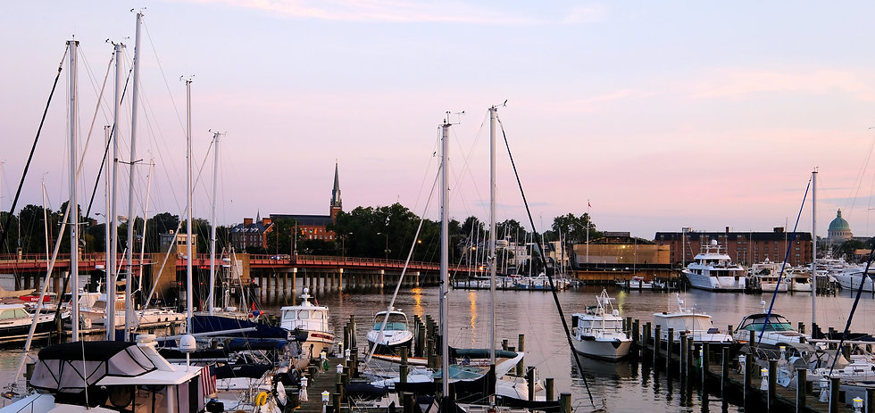 Annapolis Maryland CPAs