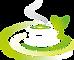 Green-Tea-Free-PNG-Image2.png