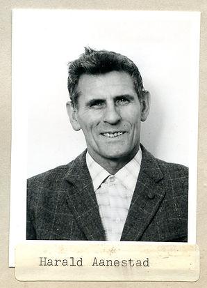 Harald Aanestad (1).jpg