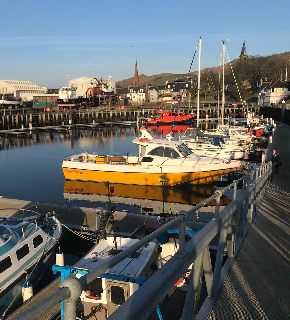 Fyne Sea Tours in Girvan Harbour in Ayrshire