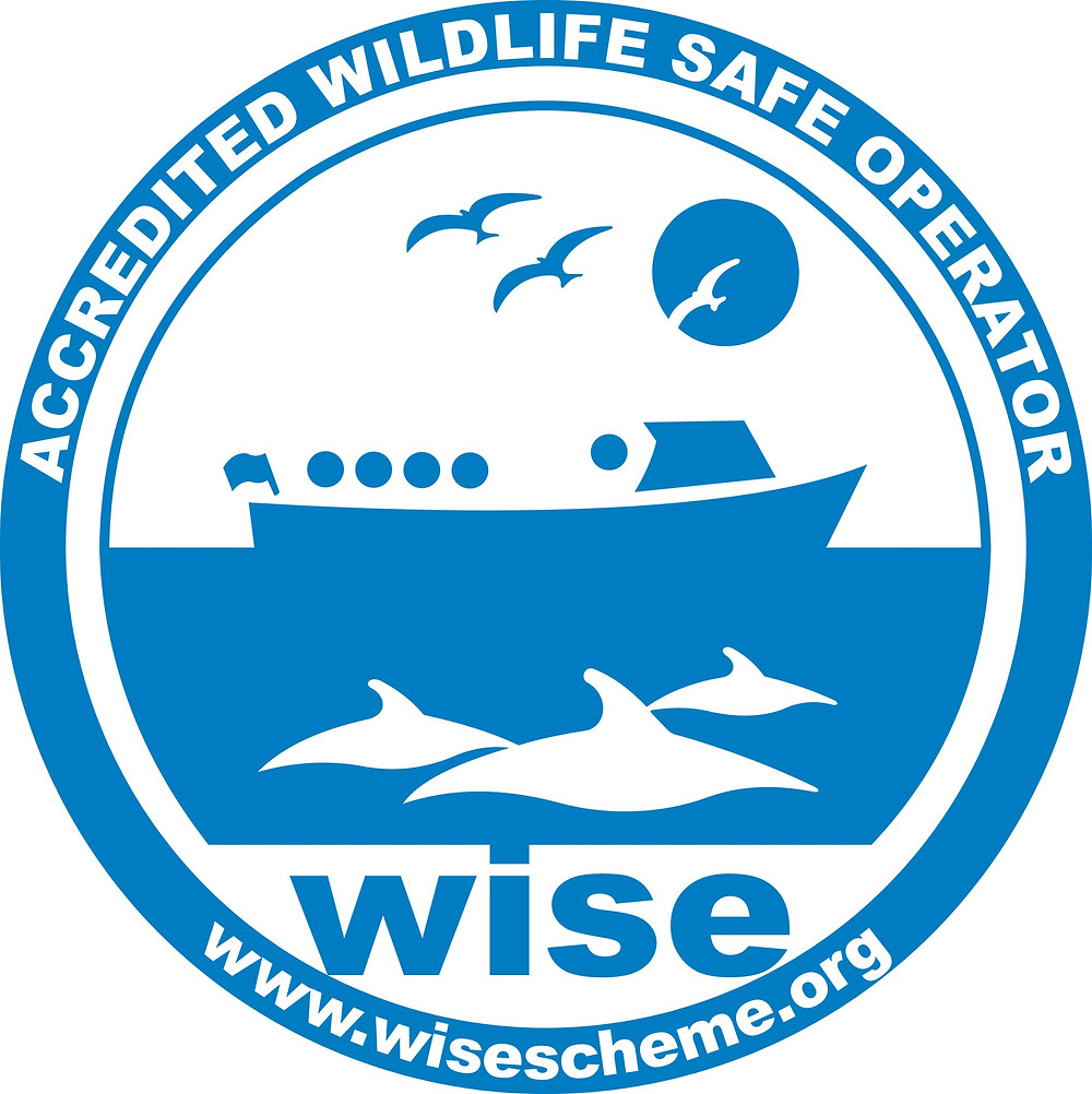 Gaining our WISE accredited wildlife safe operator accreditation