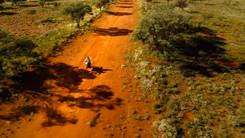 Outback Regeneration