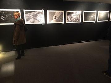 """Exposition Biarritz St Eugénie 2017 Des eaux et des Ours"""""""