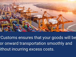 What are Customs Declarations and Why Do You Need Them?