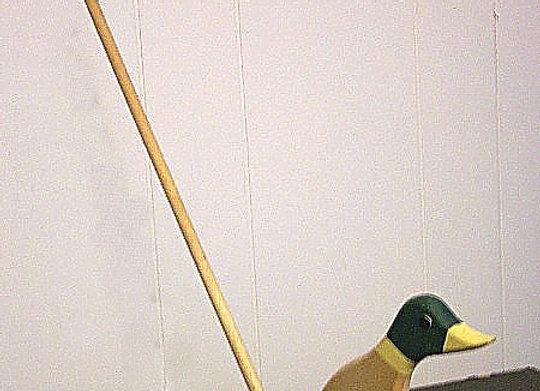 Push Duck