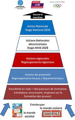 PPF-stage2.jpg