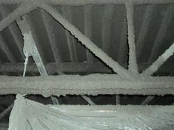 1420_interior_fp_2