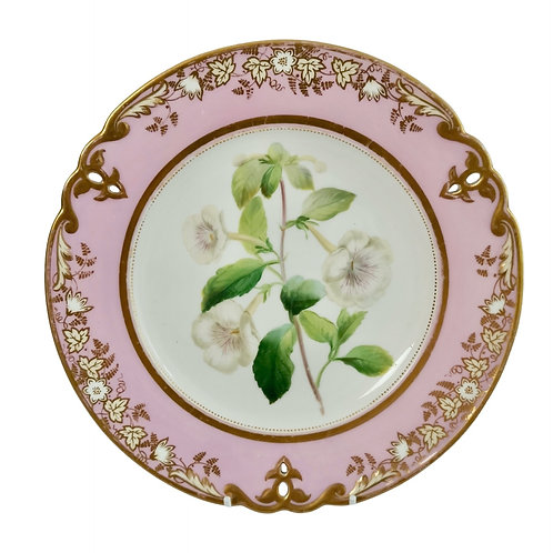 Samuel Alcock plate, pink with white achimenes, ca 1852 (1)