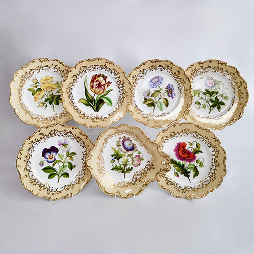 Coalport part dessert service, named flowers by John Toulouse, 1843
