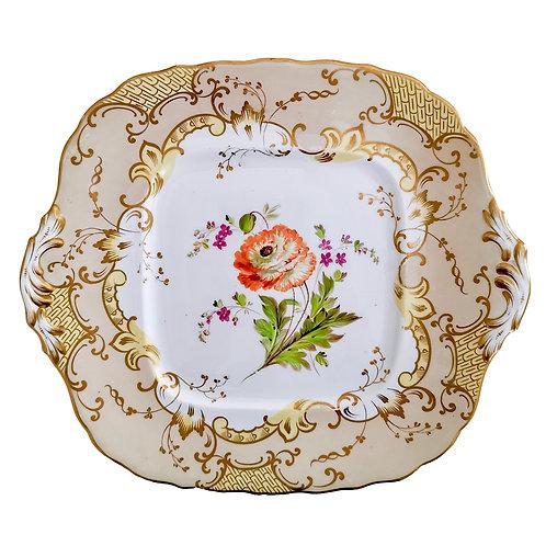 Samuel Alcock cake plate with ranunculus, ca 1845
