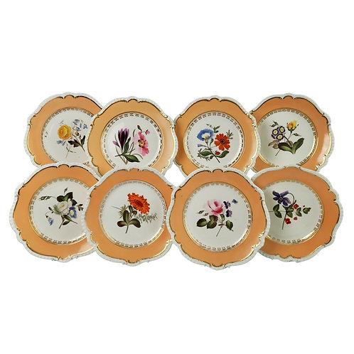 Coalport set of 8 plates, peach, flowers attr. Cecil Jones, 1820-25 (1)